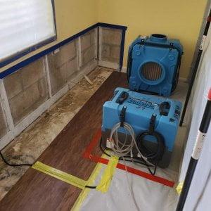 Mold Remediation 2