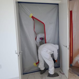 Mold Remediation 7